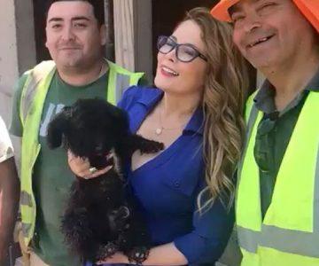 El gesto que tuvo Cathy Barriga con un perro callejero que la llenó de aplausos